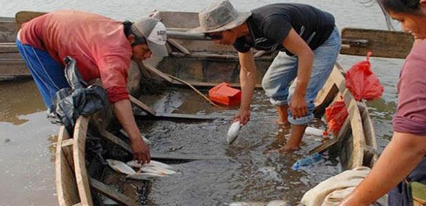 pescadores pilcomayoo
