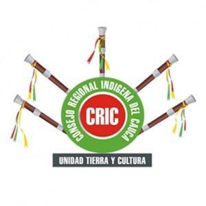logo cric 300x300 large