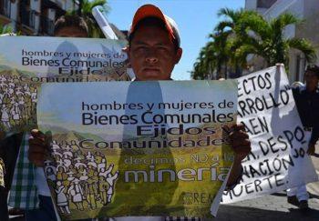 defensores bios iguana 350x243