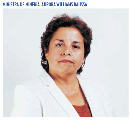 ministra mineria williams 123