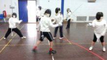OCRA fencing