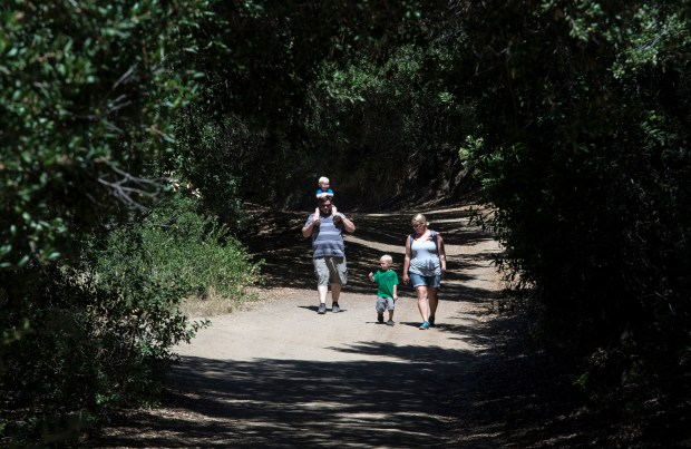 Brian Slocum of La Habra, wife Stefani, and their two sons, Dylan, left, 2, and Ben, 3, hike through the Main Road trail at Oak Canyon Nature Center in Anaheim on June 20, 2015. (Photo by Ed Crisostomo, Orange County Register/SCNG)