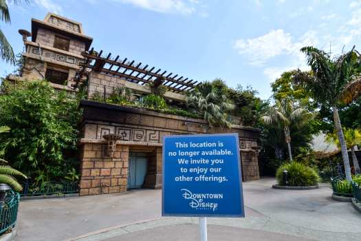 Rainforest Cafe Wants To Reopen At Downtown Disney Company