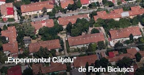 """Carte de arhitectura """"Experimentul Cățelu"""" de Florin Biciușcă"""