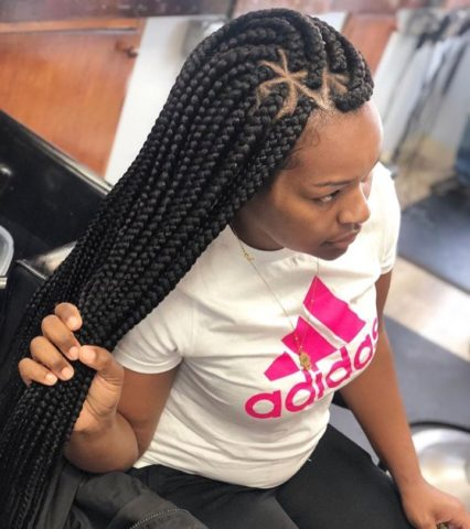 New Box Braids Hairstyles 2019 Pictures That Will Make You