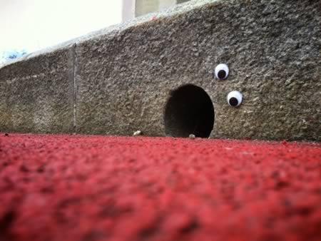 12 Coolest Examples Of Eyebombing Eyebombing Eyebomb