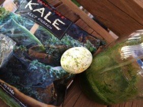 Dye Easter Eggs - Kale Juice attempt for green