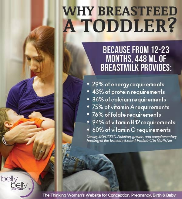 Toddler Breastfeeding