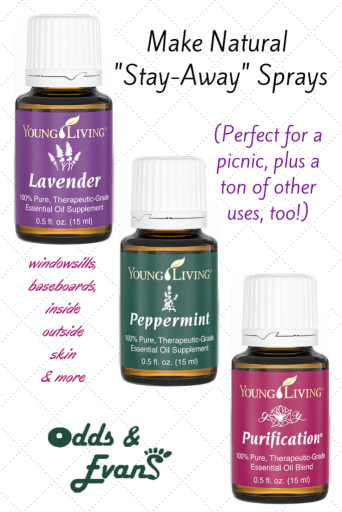 "Make Non-Toxic Natural Repellent ""Stay Away"" Sprays for Perfect Picnics. Just essential oils and water creates homemade, versatile therapeutic sprays with tons of uses!"