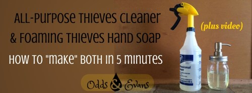 DIY Thieves Cleaner and Foaming Hand Soap