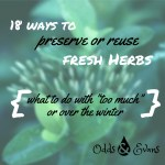 18 ways to preserve or reuse fresh herbs when too much or over winter