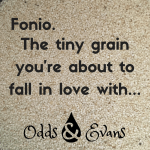 Fonio ancient whole grain gluten-free energy bites