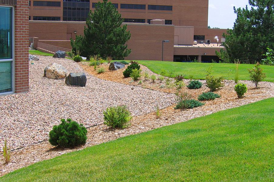Office Campus Landscape Renovation