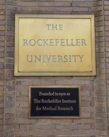university-rockefellera.jpg