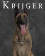 K9 Krijger | Norfolk Police Department, Virginia