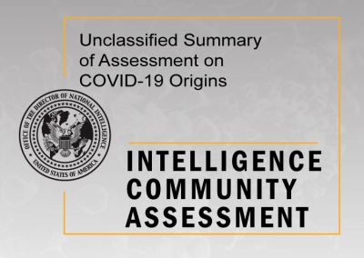 Unclassified Summary of Assessment on COVID-19 Origins