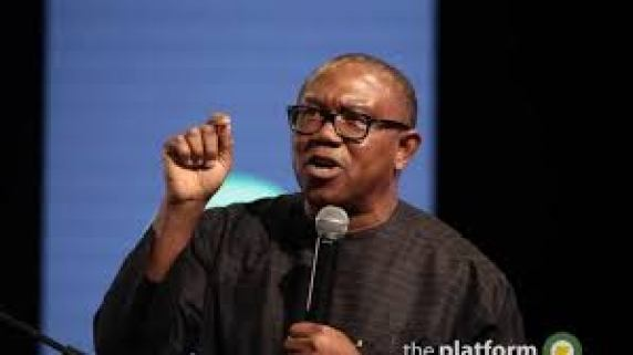 PDP Vice presidential candidate, Mr Peter Obi