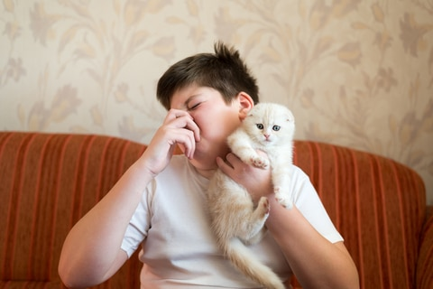 Teen turns due to unpleasant odor from cat
