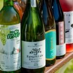 北海道最大!約100種類(予定)の道産ワインと、料理のマリアージュ ライラックワインガーデン2018 リラ マリアージュ