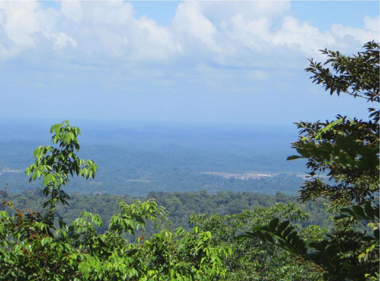 Mazaroni Plateau, ponto mais alto do parque Brownsberg, de onde é possível avistar as minerações