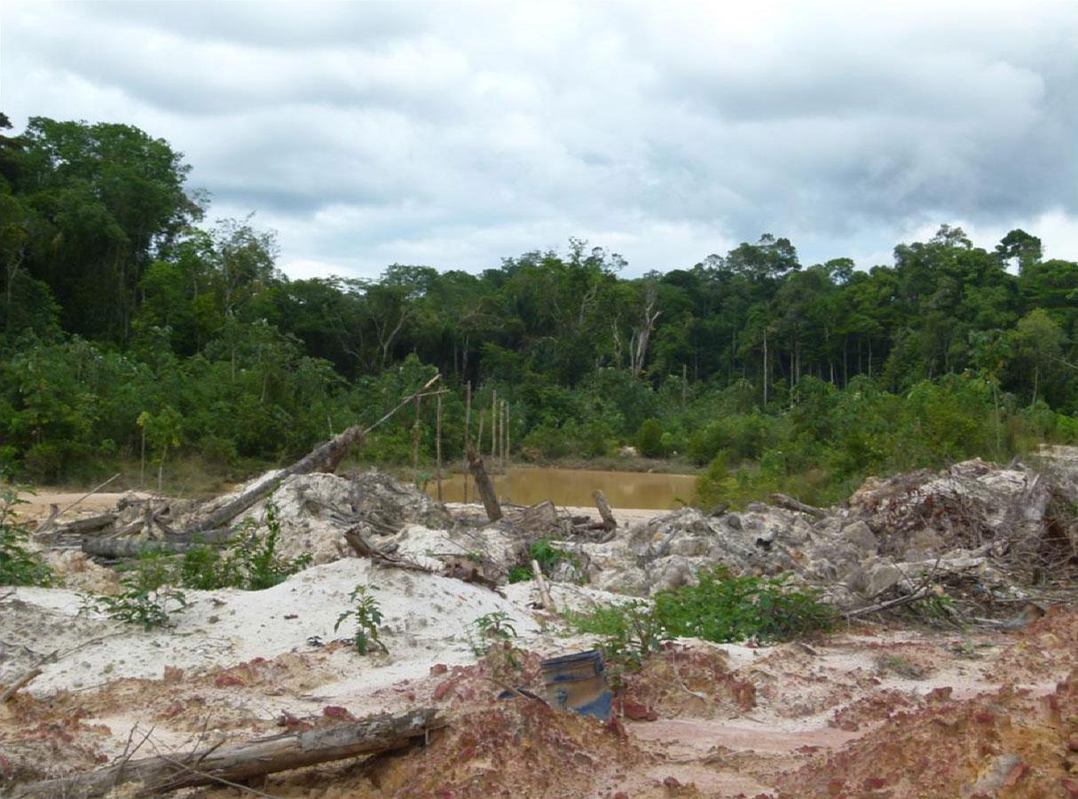 Perda de floresta e mineração abandonada