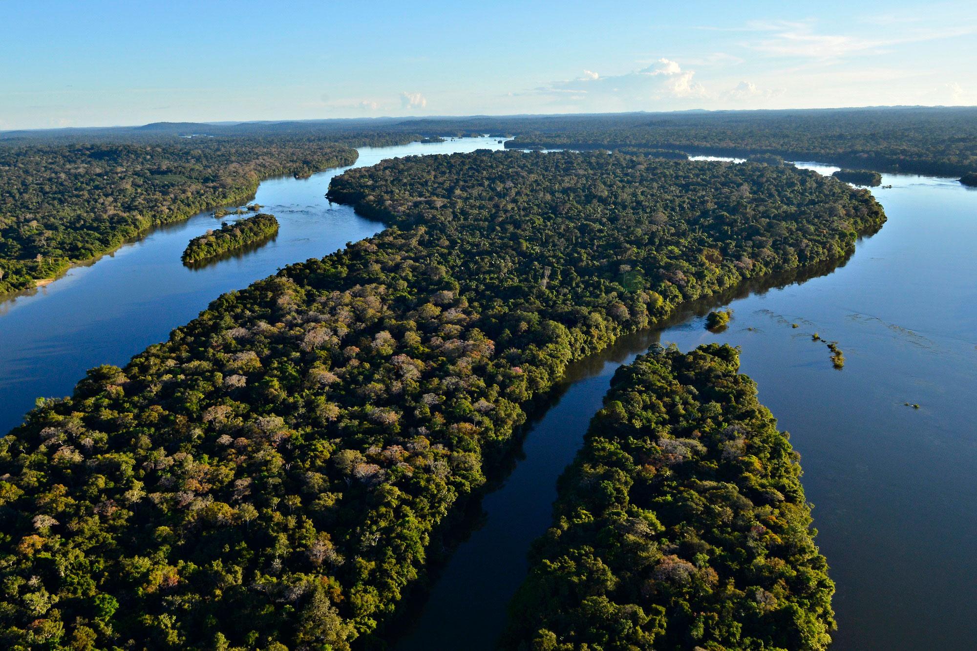 Parque-Nacional-do-Juruena Adriano-Gambarini-WWF-Brasil