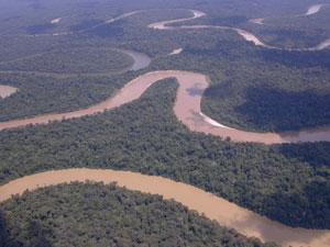 Terra Indígena Vale do Javari, com 8,5 milhões de hectares na Amazônia brasileira, protege diversos grupos indígenas isolados. Crédito: Acervo CGIRC-Funai