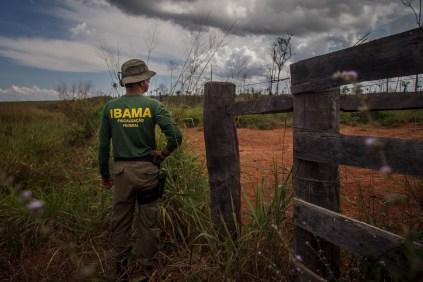 O fiscal José Brito chega a passar meses na Amazônia, revezando de equipes, durante a operação Onda Verde. Foto: Marcio Isensee e Sá
