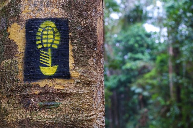A pegada amarela sob fundo preto, marca registrada da Trilha Chico Mendes. Foto: Duda Menegassi.
