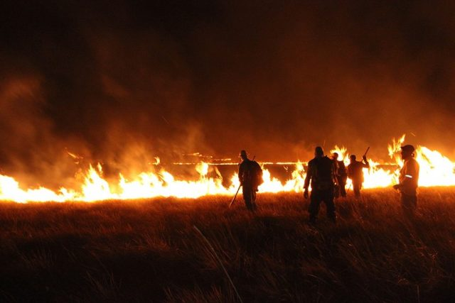 Brigadistas combatem o fogo. Foto: ASCOM ICMBio.
