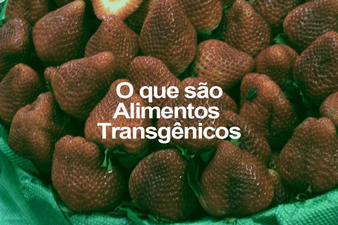 Resultado de imagem para imagens de transgênicas