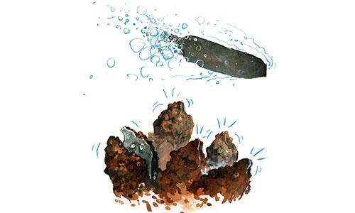 Bij herrie klapt de oester zijn schelp dicht