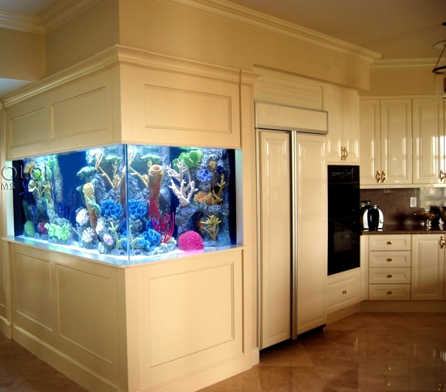 Aquarium For Home Decoration
