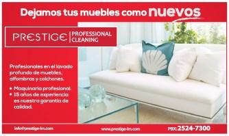 PRESTIGE professional cleaning muebles como nuevos