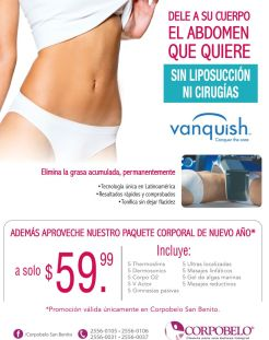 Como eliminar grasa acumulada VANQUISH conquer the core