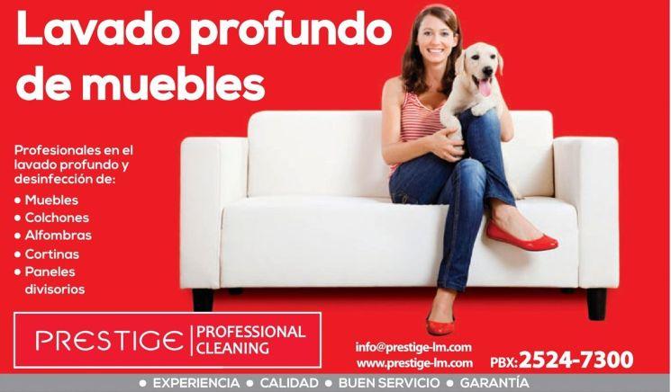 lavado profundo de muebles y alfombras - 28ene15
