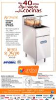 Soluciones de cocina insdustriales FREIDORA a gas 40 libras