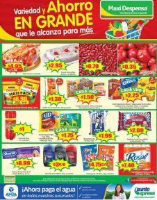 la-variedad-de-productos-y-ahorro-de-familias-salvadorenas-esta-aqui