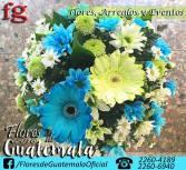 telefonos FLORES de guatemala en el salvador