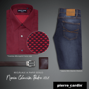Camisa Microprint mas Jeans Slim DenimOutfit perfecto