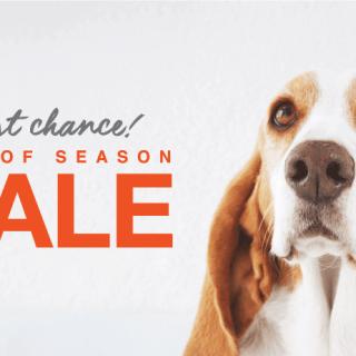 Discounts END oF SEASON hush puppies 2019
