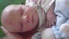 bebes reborn ebay