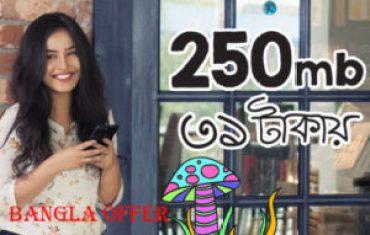 250 MB 31 TK