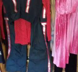 dance costumes (mechanicville)