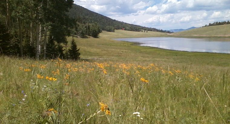 Colorado lakefront mountain land in Forbes Park picture perfect views