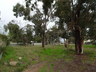 * URGENT SALE * INVESTMENT PROPERTY – VACANT BLOCK OF LAND IN NARROGIN, W.A.