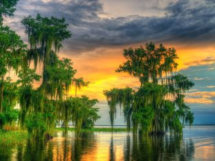 Florida 1/3 AC Lot, Lake Placid, short drive to Tampa, Florida, Bid on Payment