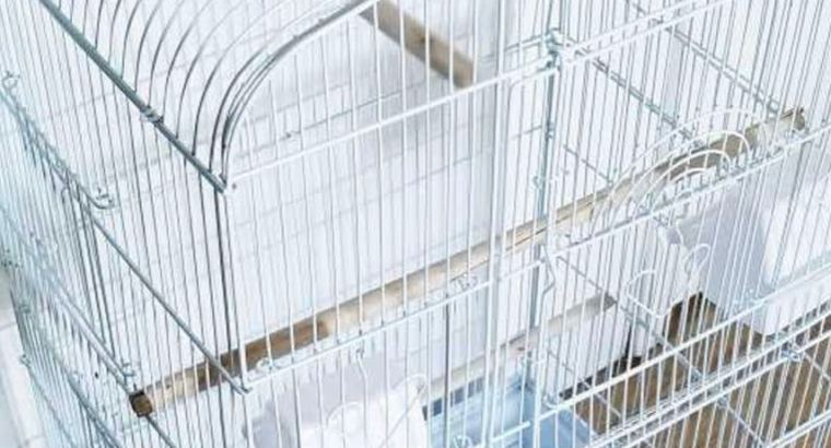 Brand new tall white bird cage
