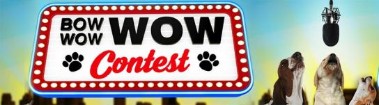 Bow Wow Wow Contest