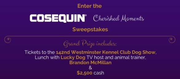 Cosequin Cherished Moments Sweepstakes